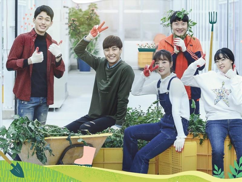 韓国ドラマ「ロマンスは突然に ~僕が恋した君とトマト~」のキャストは?プロフやSNS、あらすじも